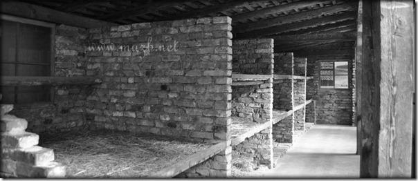 Auschwitz bed