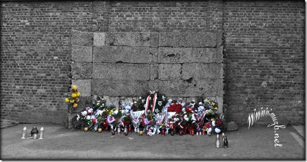 Auschwitz deadwall1