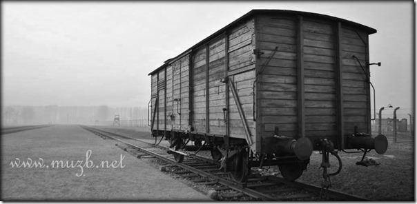 Auschwitz train